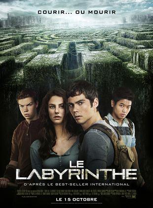 telecharger Le Labyrinthe DVDRIP 2021